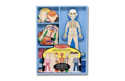 competitive Melissa & Doug Magnetic Human Body Anatomy Play Set and Storage Tray - 24pc cheap reasonable